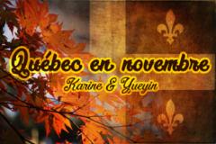 logo Québec en novembre 2016